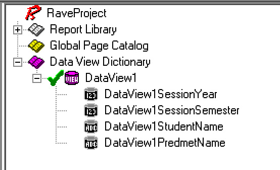 Rave Report DataView1 object
