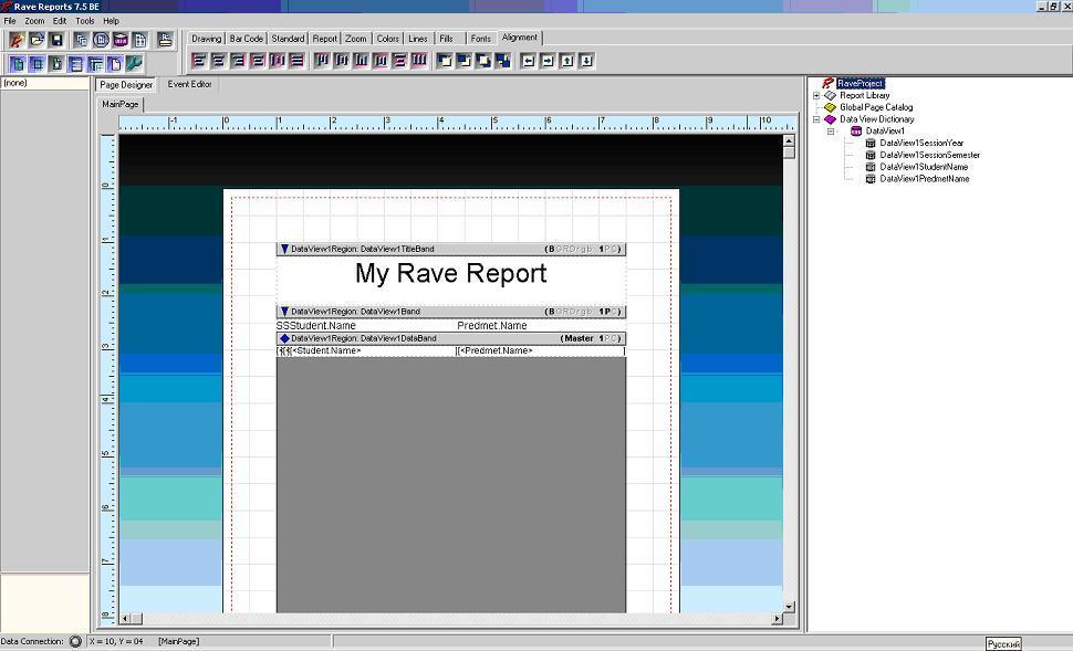 Отчет Rave Report окно