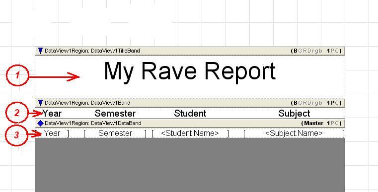 Rave Report bands