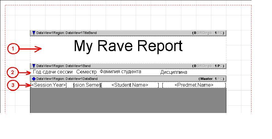 Отчет Rave Reports полоса