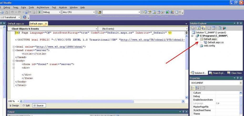 """Visual Studio Файлы формы """"Default.aspx"""" """"Default.aspx.cs"""""""