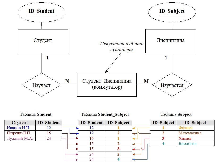 ER-модель сущность связь диаграмма