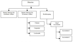 Databases. Simplified organizational and staff structure of the institution's positions