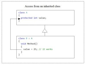 C#. Access modifier protected. Access from an inherited class